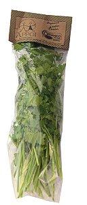 Salsinha Orgânica Higienizada - 50g (Pronta para o consumo)