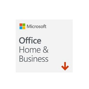 Office Home AND Business 2019 ESD Download ALL LNG