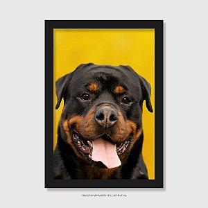 Quadro Rottweiler Retrato Fundo Amarelo