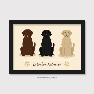 Quadro Labrador Todas as Cores