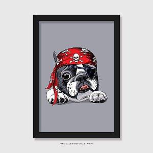 Quadro Bulldog Francês Pirata