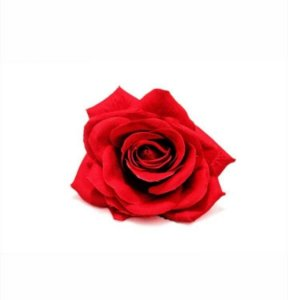 Porta-Guardanapo Rosa Vermelha