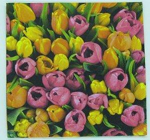 Guardanapo 33cm x 33cm Tulipas Pink e Amarela (2 unidades)