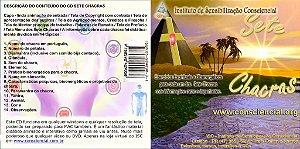 Guia de Práticas Bioenergéticas para os Sete Chacras