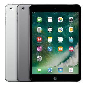 iPad Mini 2 - Usado