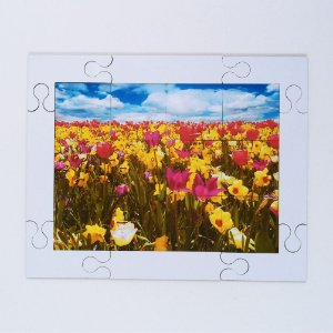 Quebra cabeça Sênior Flores no Campo 12 pçs Mundo Lúdico