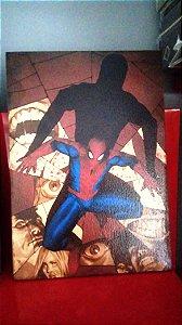 Quadro 30x20cm - Spider Man