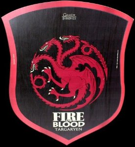 PLACA DECORATIVA 30X25 Fire and Blood