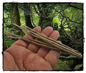 Titica para aplicação de Kambô