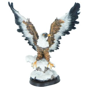 Águia asas abertas