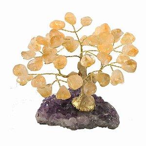 Árvore de pedra Citrino - Base: Drusa Ametista