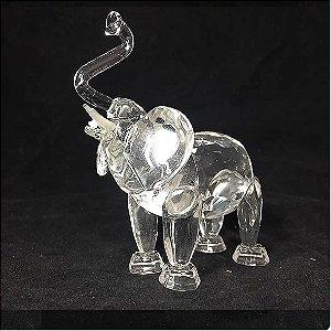 Elefante de Vidro