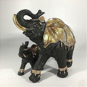 Elefante com filhote