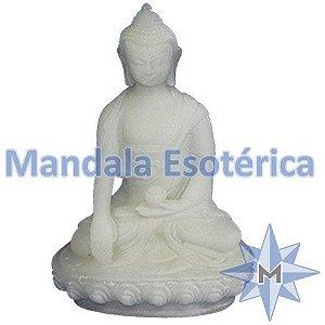 Buda Contato com a Terra
