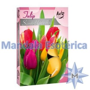Vela T'Light Aroma Tulipa