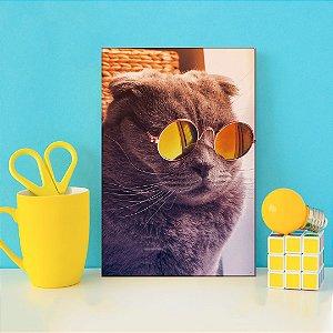 Quadro Decorativo - Gato de óculos escuros
