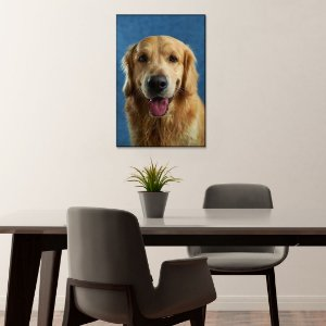 Quadro Decorativo - Retrato de Golden Retriever