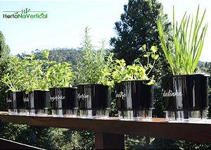 KIT - 6 Vasos Auto-Irrigáveis - Linha Gourmet PRETO - Escolha os vasos!