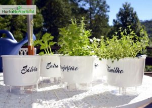 KIT - 6 Vasos Auto-Irrigáveis - Linha Gourmet BRANCO - Escolha os vasos!