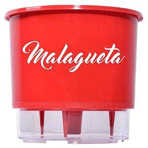 Vaso Auto Irrigável da linha Pimenta - Malagueta (unidade)