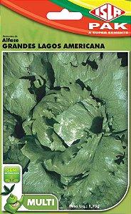 ALFACE GRANDES LAGOS AMERICANA - Semente para sua horta - Isla Multi Pack