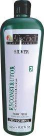 Gloss Escova Progressiva Alise Fácil Silver sem formol