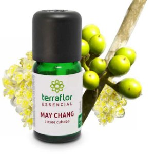 Óleo Essencial Puro 10ml -  May Chang (litsea cubeba)