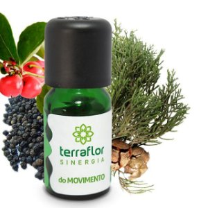 Sinergia Movimento -10ml