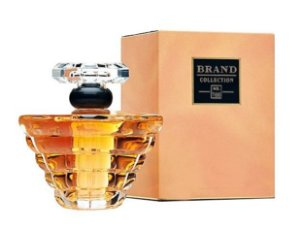 Nº 166 Eau de Parfum Brand Collection 25ml - Perfume Feminino