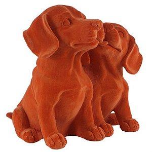 Cachorros Decorativos