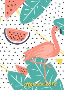 Agenda Flamingos