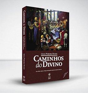 Caminhos do Divino: um olhar sobre a Festa do Espírito Santo em Santa Catarina
