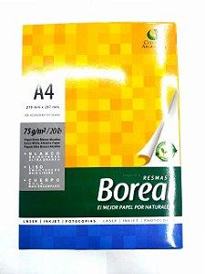 Papel Boreal A4 cx 10 Pacotes