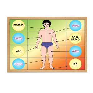 Quebra Cabeça corpo humano - Base MDF - 16 pc - PVC enc.