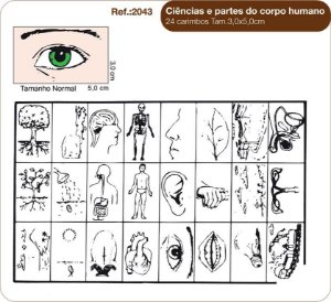 Carimbos Pedagógicos Ciencias E Partes Do Corpo Humano 24 Unidades - Fundamental