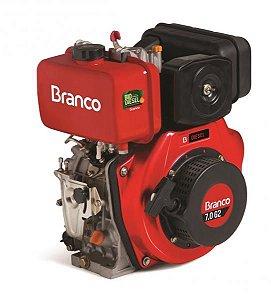 Motor À Diesel 7,0cv Partida Elétrica Motor Bd-7.0 G2 Branco