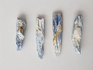 Cianita azul comum Pequena
