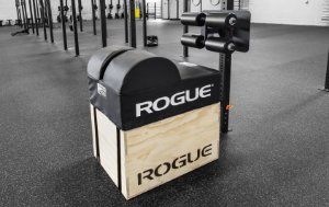 Rogue Echo GHD 3x3 + Suporte Parede + Barra Estabilizadora +Caixa Pular Rogue