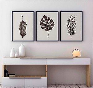 Conjunto 3 Quadros Decorativos Folhas Secas - Folha Costela Adão, Folha Palmeira, Folha Musa