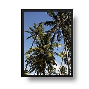Quadro Decorativo Poster Foto Paisagem Natureza Coqueiros - Praia, Pipa, RN