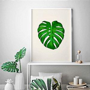 Quadro Decorativo Poster Natureza - Folha Costela de Adão, Folhagem Verde