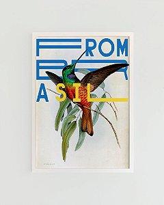 Quadro Decorativo Poster Alma da City Beija-Flor From Brasil - Natureza, Tropical, Gravura