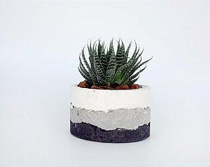 Vaso Cimento Concreto Para Plantas Paula Goedert- Degradê branco, cinza e grafite