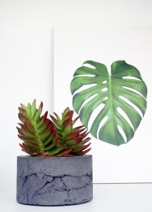 Vaso Cimento Concreto Para Plantas Paula Goedert - Chumbo