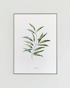 Quadro Decorativo Poster Folhas Eucalipto, Eucalyptus - Flowersjuls, Aquarela