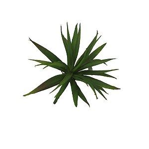 Suculenta Média Verde