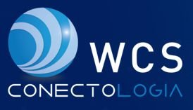 WCS Conectologia Firewall