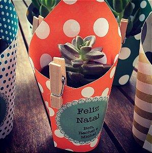 Mini suculentas em vaso decorado (somente para SP Capital)
