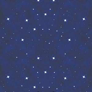 Papel de Parede Adesivo Noite Estrelada