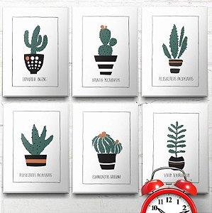 Placas Decorativas Família Cactus